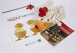 Backyard Chickens Gift Set