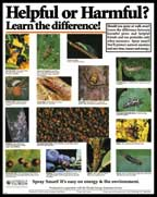 Beneficial Insect Poster