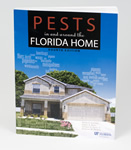 Pests In and Around the Florida Home