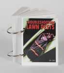 Troubleshooting Lawn Pests