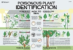 Poisonous Plant Identification poster