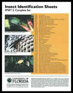 Insect Identification Sheets