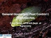 General Household Pest Control 1: Cockroaches