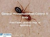 General Household Pest Control II: Ants