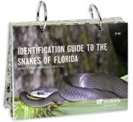 Identification Guide to the Snakes of Florida