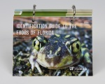 Identification Guide to the Frogs of Florida