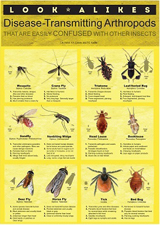 Look-alikes Disease-Transmitting Arthropods