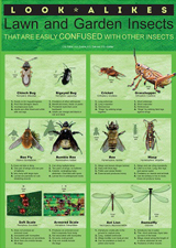 Look-alikes Lawn & Garden Insects