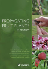 Propagating Fruit Plants in Florida