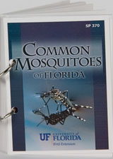 Common Mosquitoes of Florida