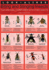 Look-alikes Biting & Stinging Insects