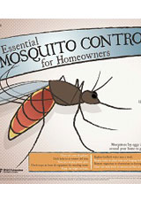 Essential Mosquito Control Tips poster