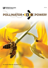 Pollinator Power Safari Kit