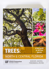Trees:  North and Central Florida